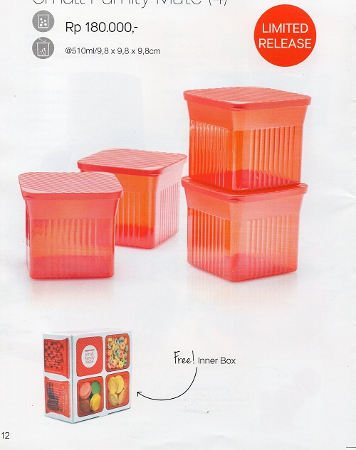 Small Family Mate Tupperware