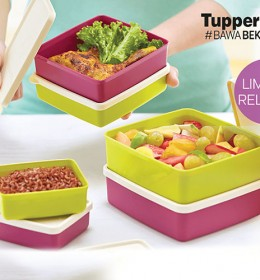 Healty Buddy Tupperware