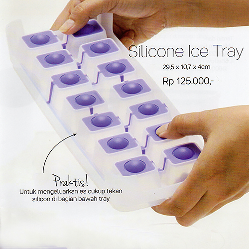 Ice Tray Tupperware