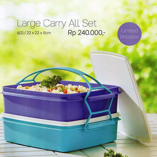 Large Carry All Set Tupperware