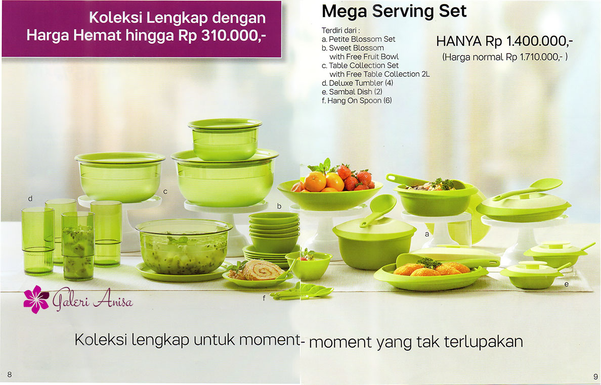 Mega serving set tupperware