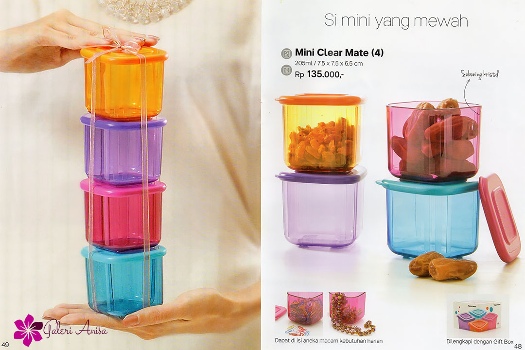 Mini Clear Mate Tupperware