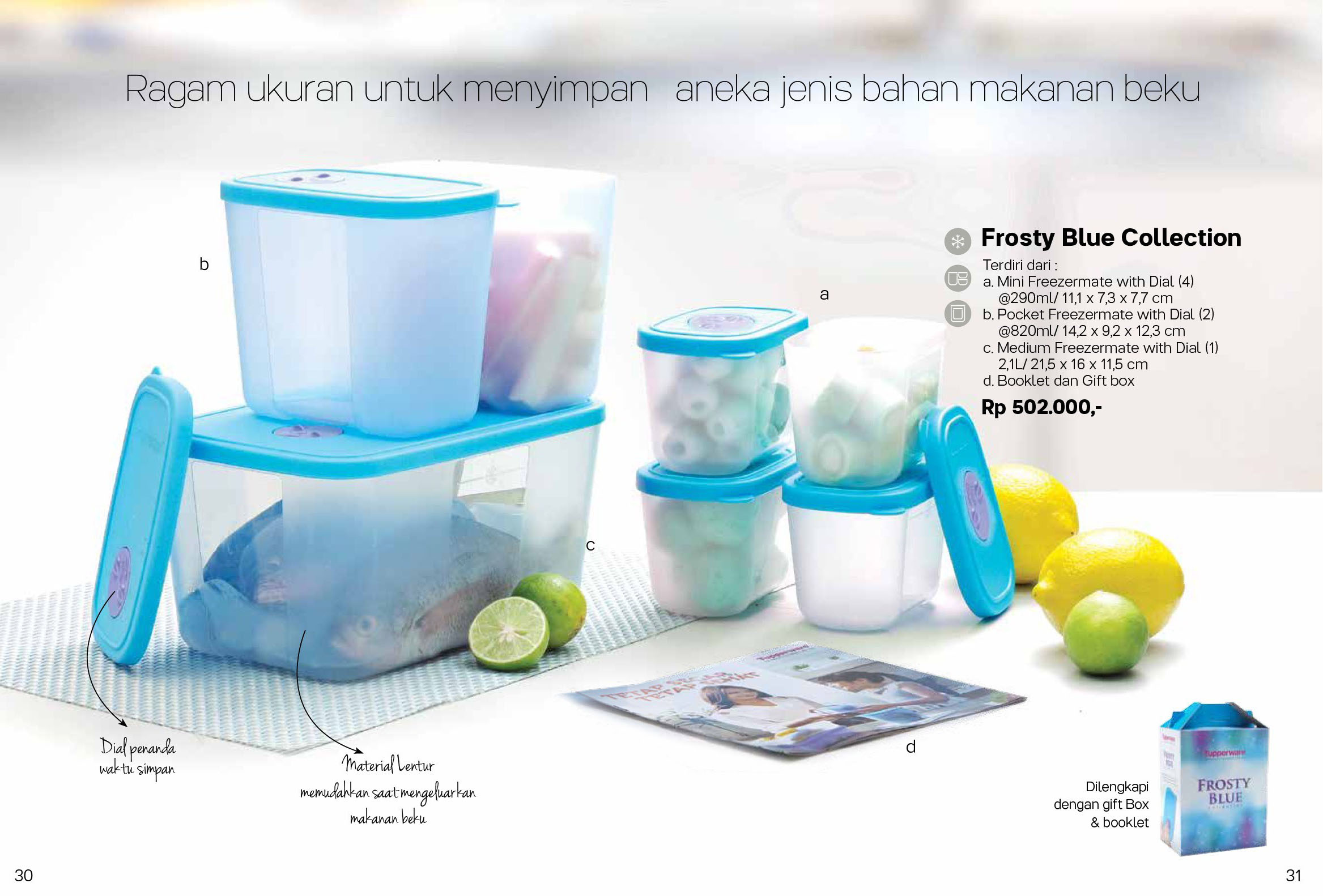 Frosty Blue Collection Tupperware