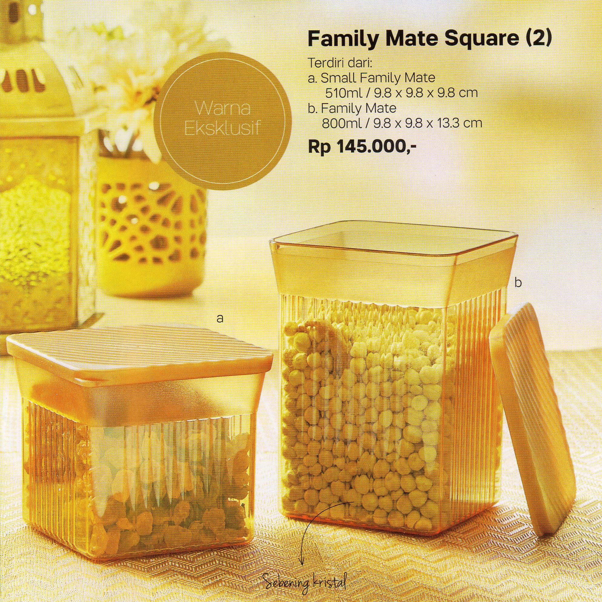 Family Mate square Tupperware