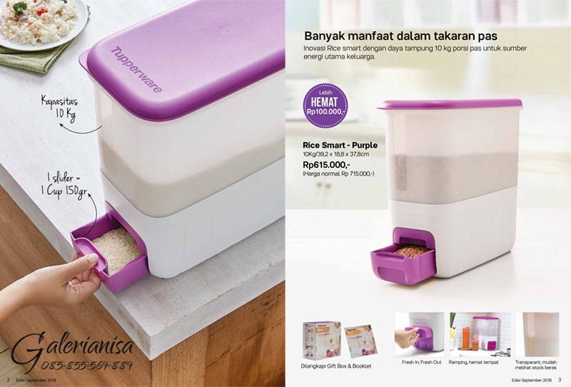 Rice Smart Purple Tupperware