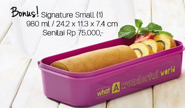 Signature Set Tupperware