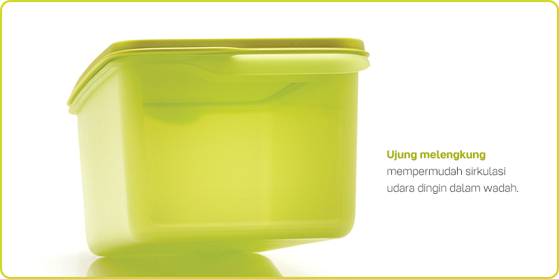 Fresh Lime Tupperware