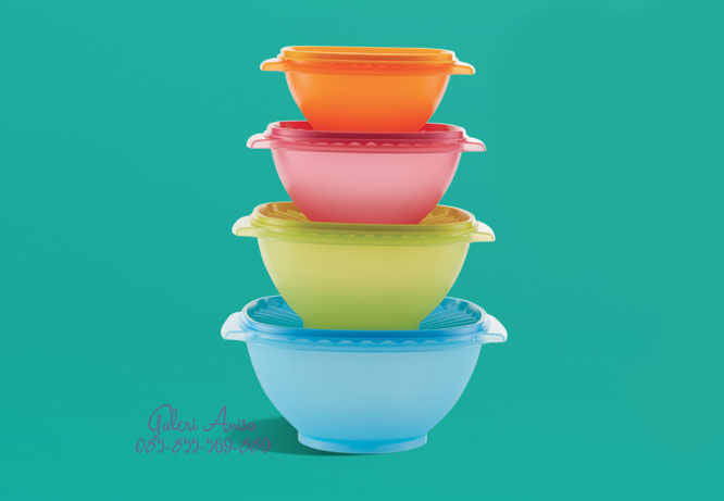 Servalier Bowl Set Tupperware